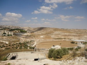 Beit Sahour - Shepherd's Fields (2)